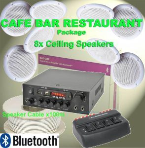 commercial ceiling speakers